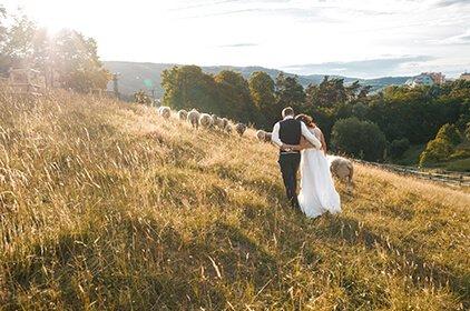 Svatební fotograf, fotograf na svatbu, svatební focení.